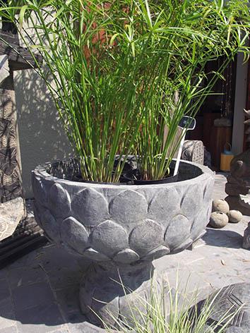 Lil'o bambous - Bac en pierre en lotus