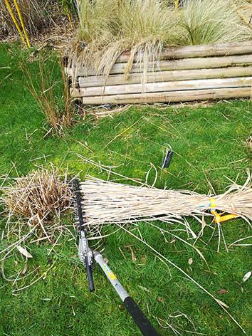 Lil'o bambous - Etape 4 - Couper la graminée