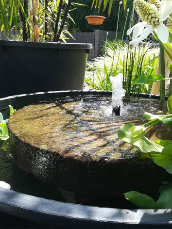 Lil'o bambous - Fontaine avec acienne meule indienne avec plantes