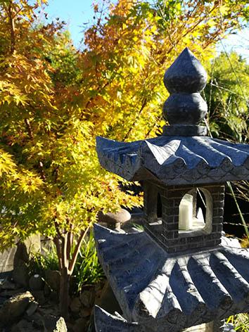 Lil'o bambous - Pagodes chinoises en pierre avec érable japonais