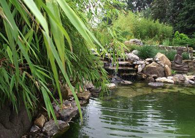 Lil'o bambous - ambiance du jardin - Bambous et cascade de l'étang