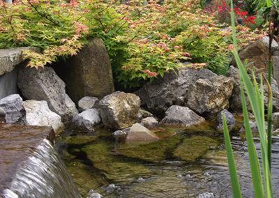Lil'o bambous - ambiance du jardin - Détail de la lame d'eau et Acer little princess