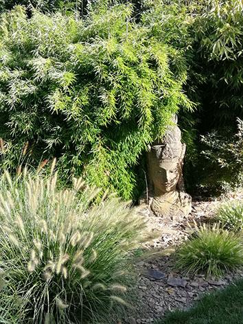 Lil'o bambous - ambiance du jardin - Ensemble composé de Fargesia nitida volcano - Pennisetum Gelbstiel et little bunny