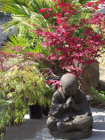 Lil'o bambous - ambiance du jardin - Erables japonais et yogi en pierre