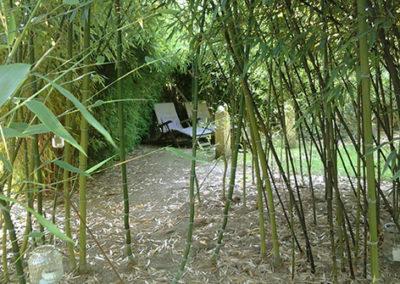 Lil'o bambous - ambiance du jardin - Petit coin perdu dans les bambous
