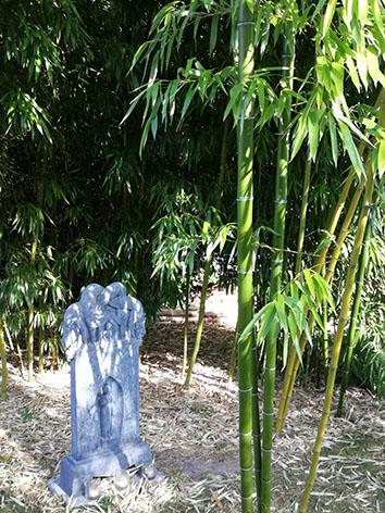 Lil'o bambous - ambiance du jardin - Stèle en pierre entourée par Phyllostachys prominens