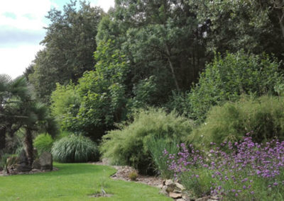 Lil'o bambous - ambiance du jardin - Vue avec Verveine de Buenos Aires - Bambous - Graminées et palmiers