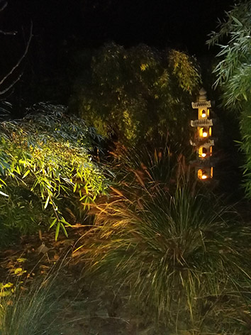 Lil'o bambous - ambiance nocturne - Pagodes et graminées